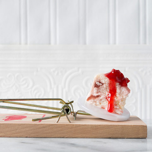 500gourmet-mouse-traps-by-davide-luciano-and-claudia-ficca-designboom-06